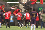 Футбольный матч между школьниками и слонами