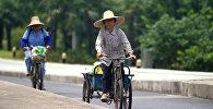 Женщины едут на велосипедах по одной из улиц Шанхая, архивное фото