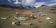 Виды Монголии, архивное фото