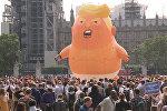 Надувной Трамп принял участие в протестах в Лондоне
