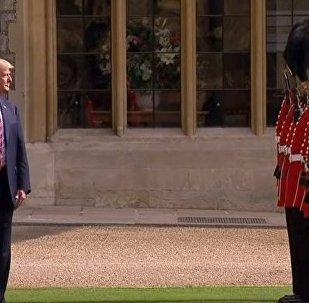 Конфуз Трампа на встрече с Елизаветой II возмутил соцсети