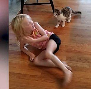 Животные пугают детей