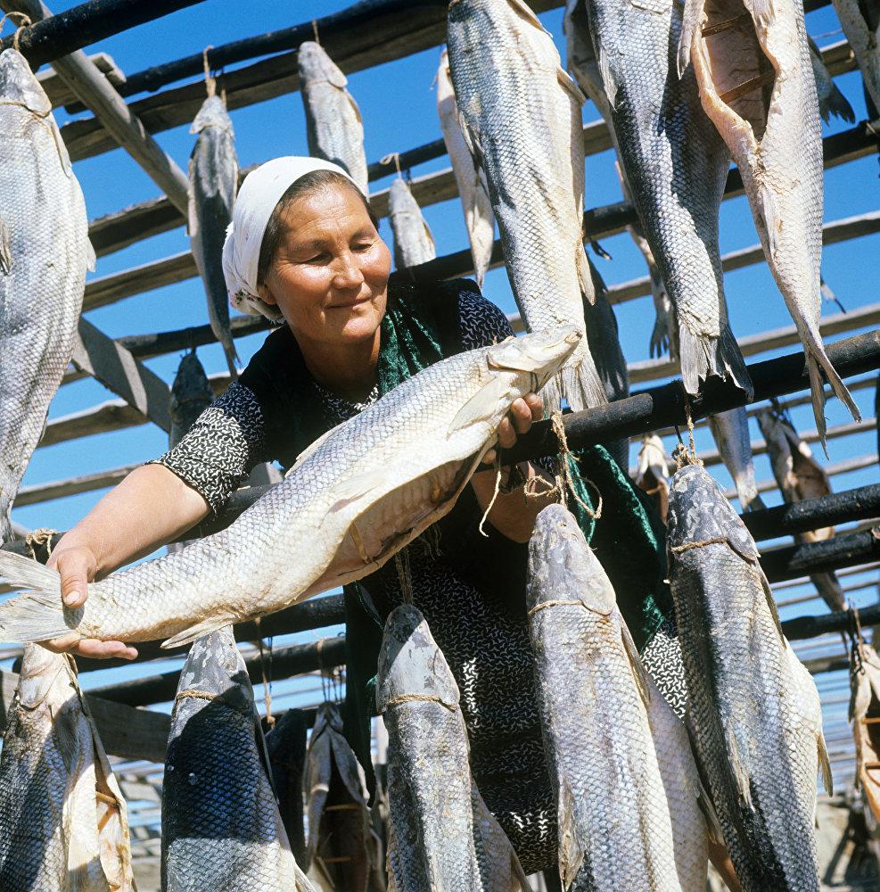 Бугуньский рыбозавод. Вяленая усач-рыба, водится только в Аральском море. Казахская ССР.