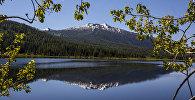Озеро Язевое, Восточный Казахстан