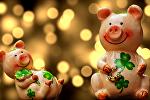 Год Желтой Земляной Свиньи (кабана): прогноз на 2019 год