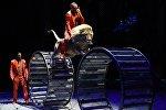 Аттракцион Среди хищников братьев Запашных на сцене Большого Московского государственного цирка