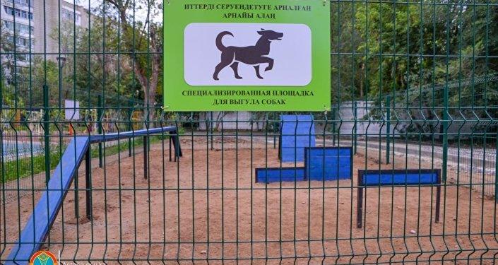 Площадка для выгула собак впервые появилась в Астане