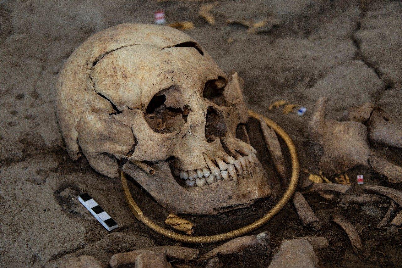 Найденные в кургане Елеке сазы представляют огромный научный интерес