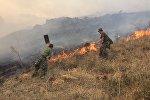 Тушение пожара на границе Казахстана и Кыргызстана