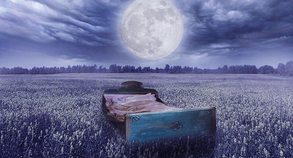 Кровать в поле под открытым небом, иллюстративное фото