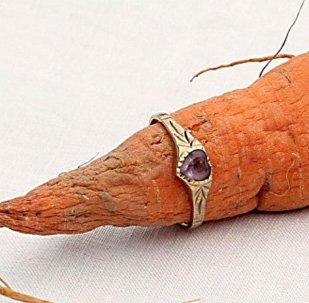 Колечко на морковке