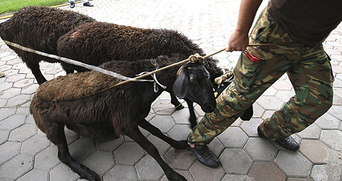 Курбан айт в Алматы