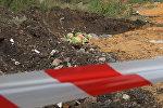 Как выглядят зараженные арбузы – в Астане уничтожили опасную продукцию
