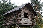 Деревянный дом в окружении сосен, иллюстративное фото