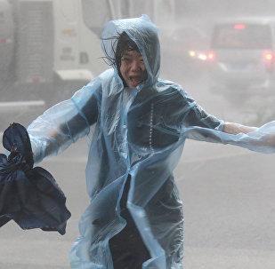 Мангхут тайфунының салдары