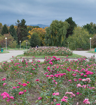 Ботанический сад в Алматы