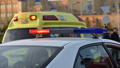 Полицейское авто и автомобиль скорой помощи, иллюстративное фото