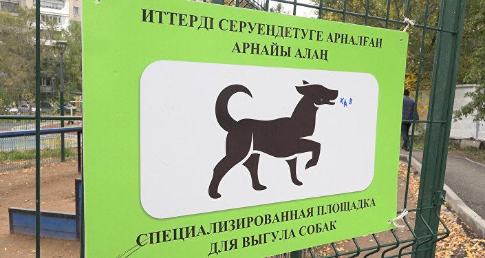 Первая площадка для собак в Астане