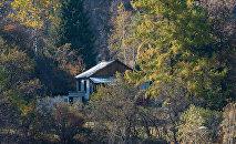 Дом в лесу, архивное фото