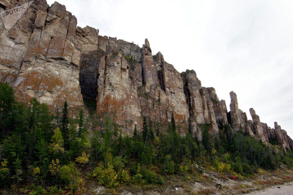Национальный природный парк Ленские столбы, расположенный в бассейне среднего течения реки Лены