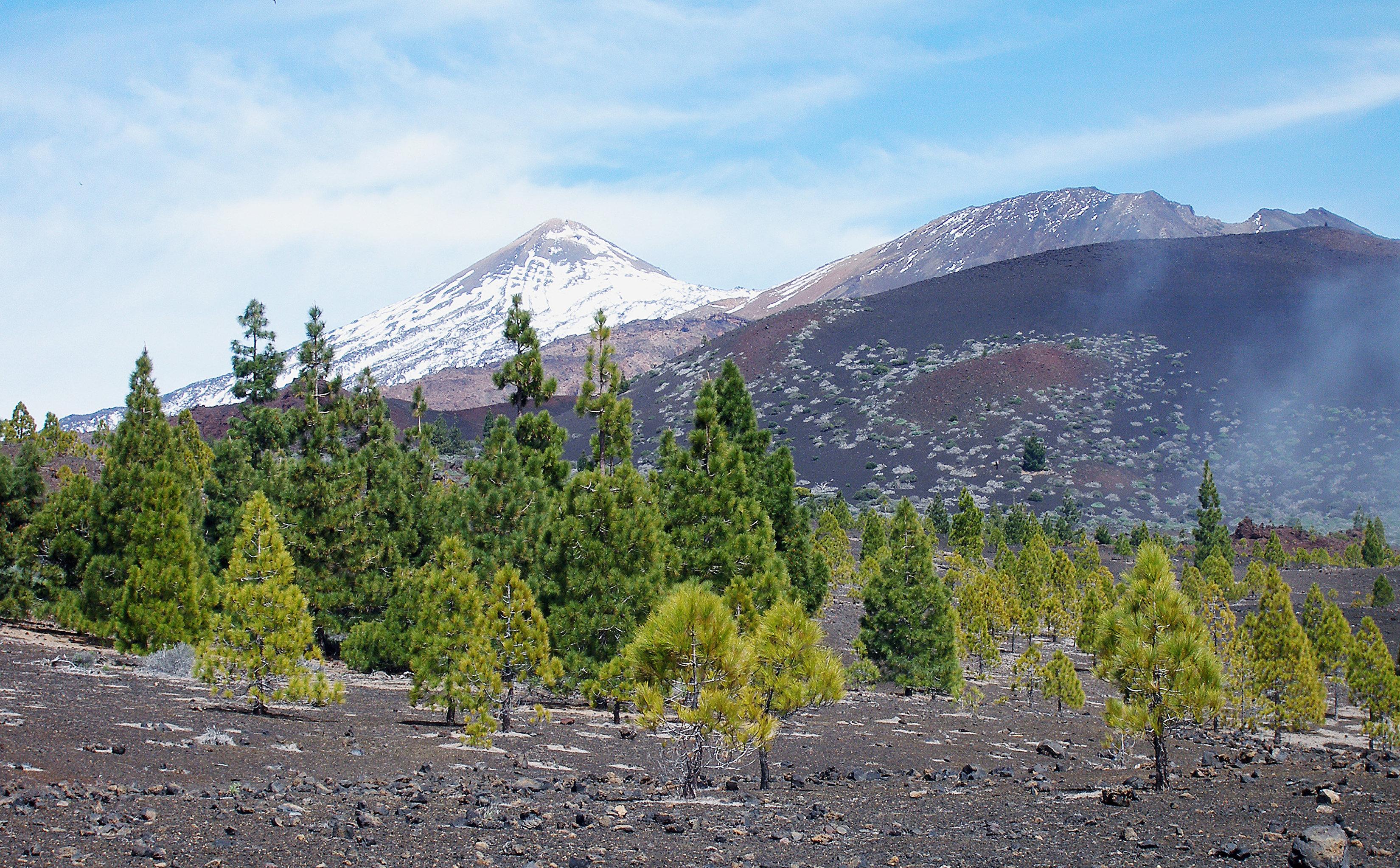 Остров Тенерифе.Национальный парк Тейде