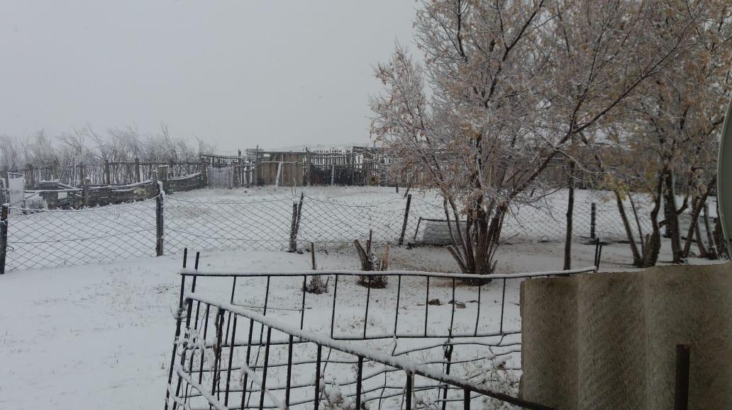 Павлодар облысы Баянауыл ауданы Күркелі ауылындағы алғашқы қар