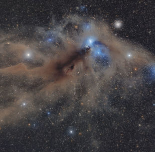 Снимок Corona Australis Dust Complex фотографа Mario Cogo, победивший в номинации Stars and Nebulae конкурса Insight Investment Astronomy Photography of the Year 2018