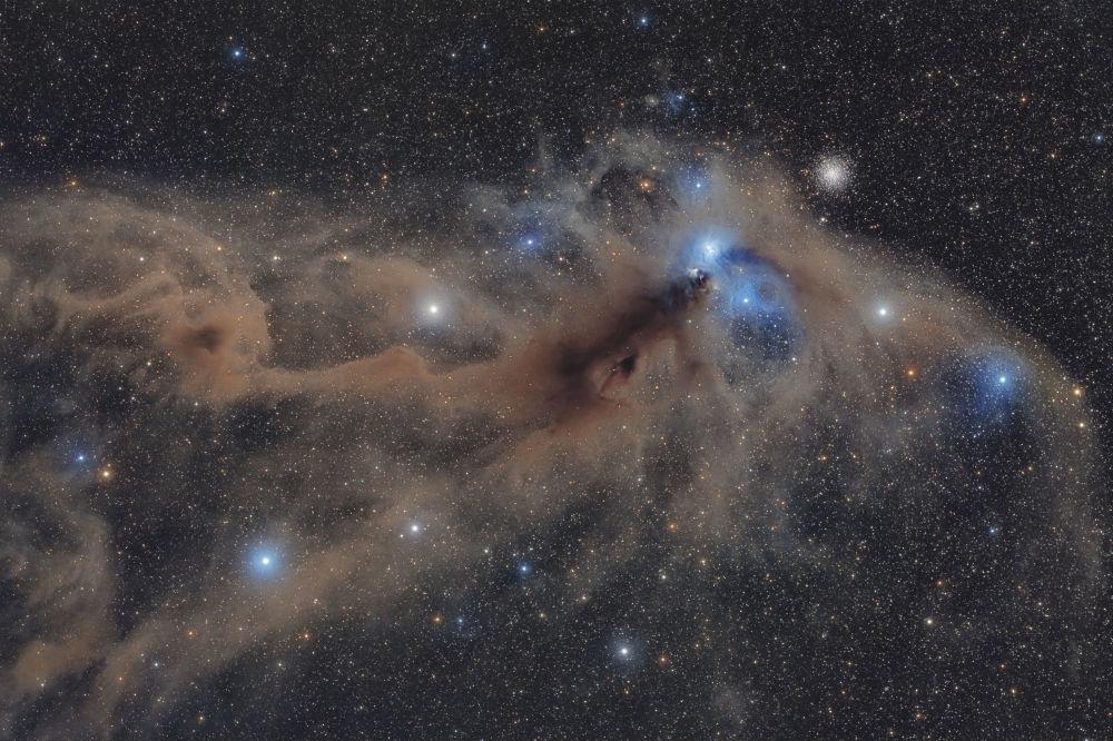 Снимок Corona Australis Dust Complex фотографа Mario Cogo, победивший в номинации Stars and Nebulae конкурса Insight Investment Astronomy Photography of the Year 2018