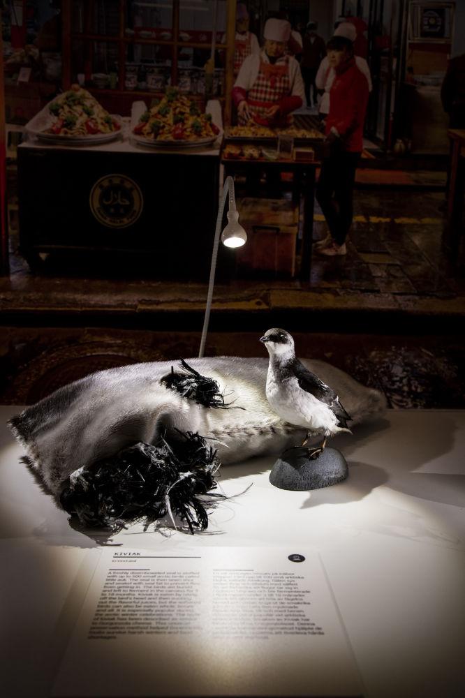 Кивиак - традиционная зимняя еда инуитов из Гренландии, которая изготовлена из маленьких птиц, сброженных в шкуре тюленя.