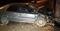Автомобиль влетел в дерево по Утемисова