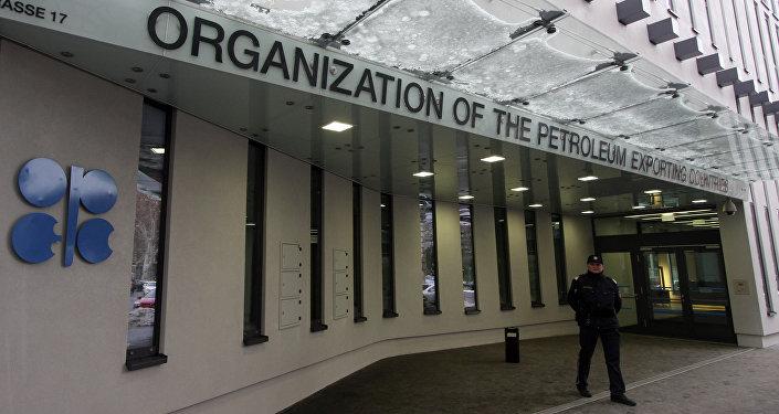 Архивное фото полицейского, охраняющего вход в здание, где расположена штаб-квартира ОПЕК в центре Вены