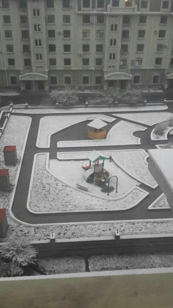 В Астане выпал снег