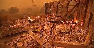 Город Парадайс в США охвачен огнем - видео
