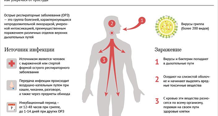 Инфографика: как уберечься от простуды