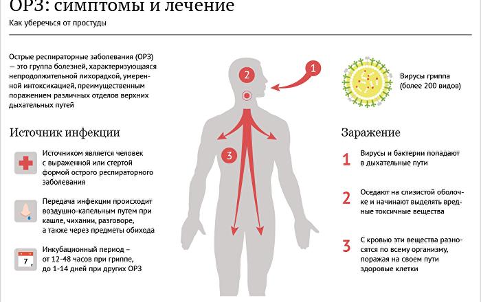 узкий круг орви у детей чем лечить доктор комаровский термобелье необходимо