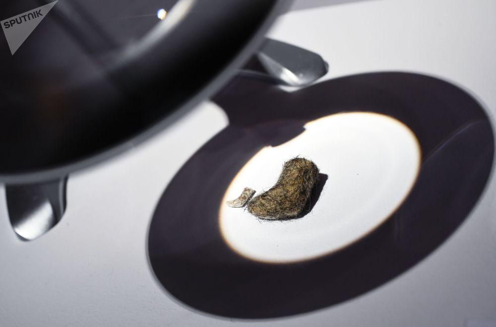 Миниатюрные валенки (автор В. Соколов, Кинешемский музей валенок) под лупой на выставке Валенки. От царских дворцов до модных подиумов