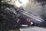 В городе Байромвилл (штат Джорджия), вагоны грузового поезда, перевозившего пропан, сошли с рельсов и упали с моста на шоссе