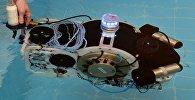 Робот в бассейне, архивное фото