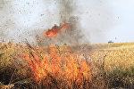 Фото с места пожара в степи