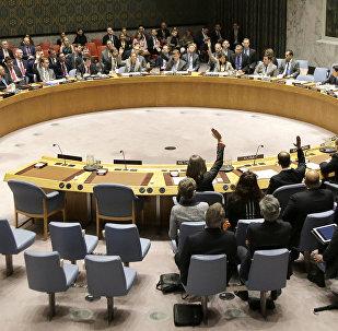 Россия запросила срочный созыв открытого заседания Совбеза ООН по ситуации в Керченском проливе