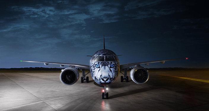 Изображение снежного барса на самолете
