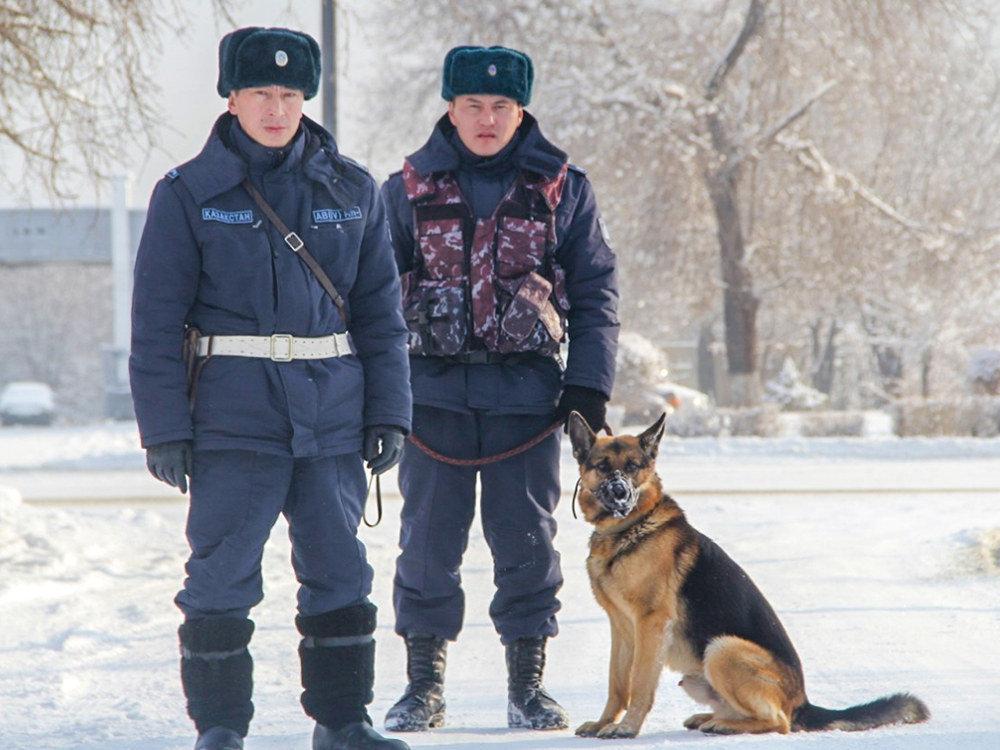 Полицейские со служебным псом по кличке Сэм