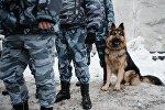 Служебная собака, архивное фото