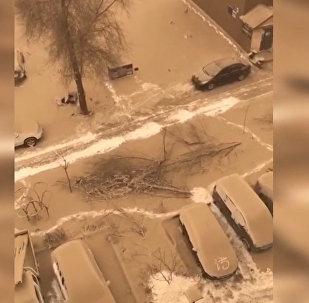 Снег цвета тирамису выпал в Китае