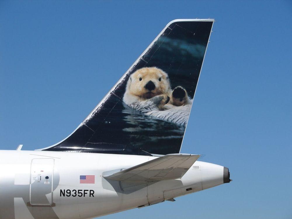 Самолет с изображением выдры на хвосте американской авиакомпании Frontier Airlines