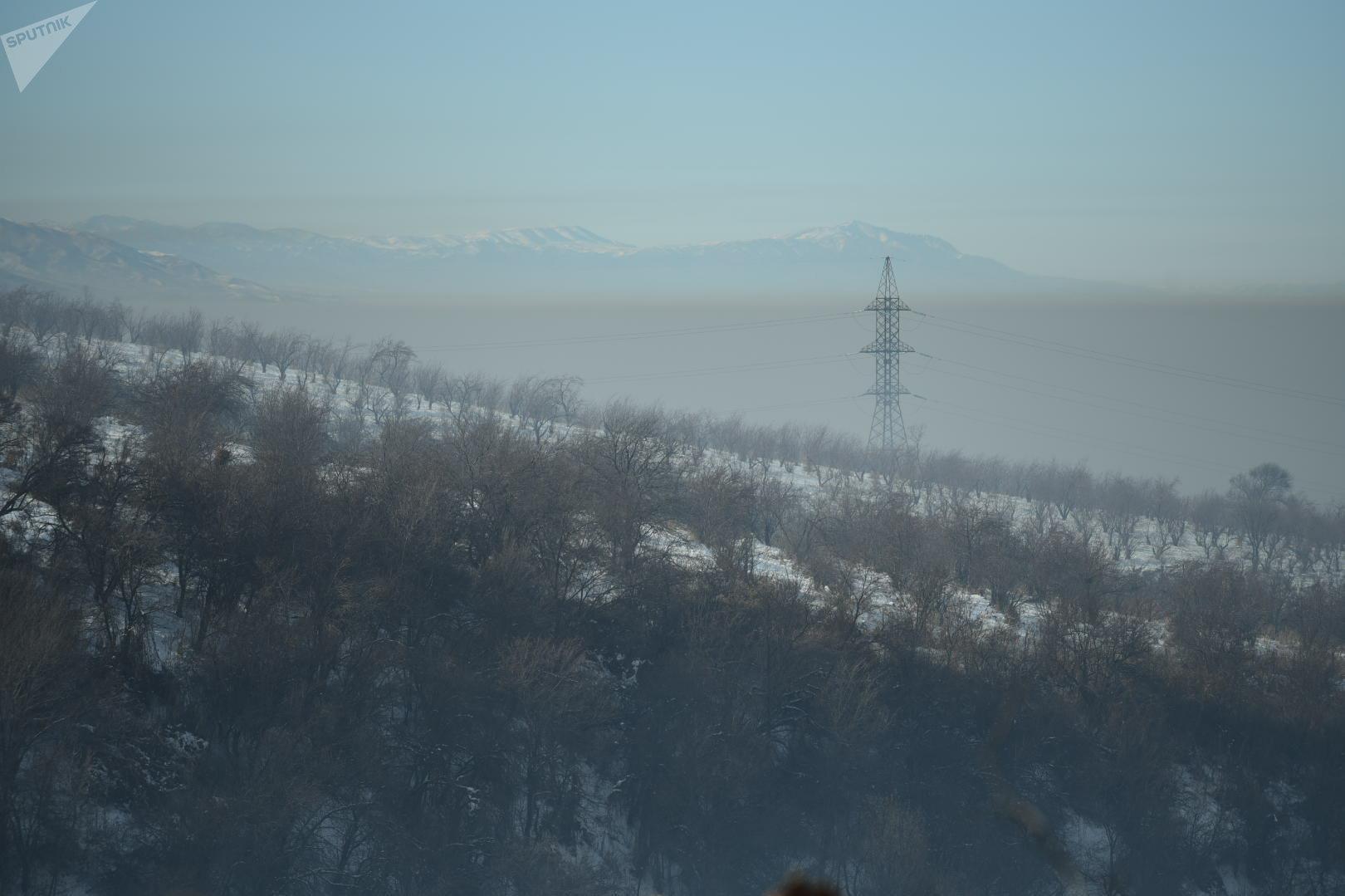 Туман в Алматы