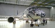 Самолет с рисунком в виде снежного барса