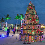 Флоридадағы рождество шыршасы.