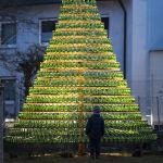 Германиядағы рождество шыршасы.