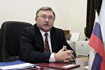 Постоянный представитель России при международных организациях в Вене Михаил Ульянов